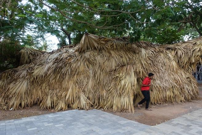 Neiburgis Palmblatt 2 besser